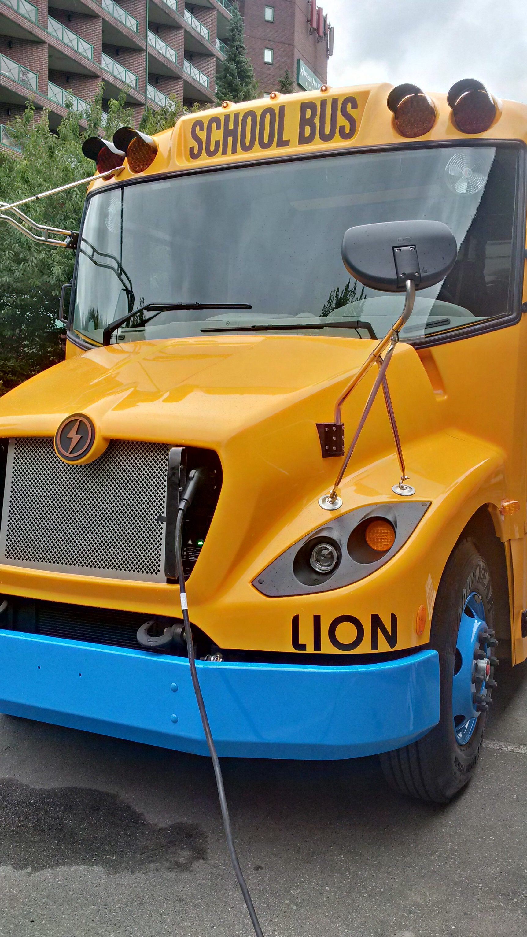 Lion C charging Harrison